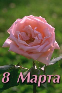 С 8 марта. Фото 1